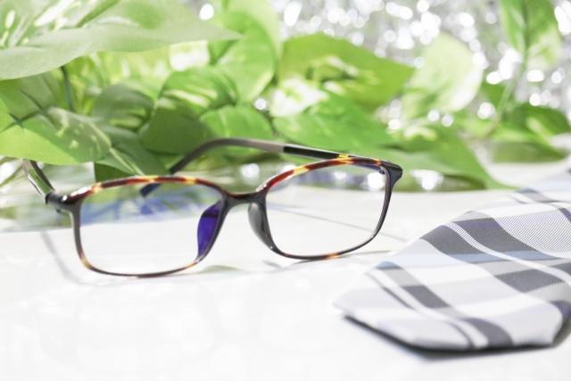 オフィス×観葉植物の効果②目の疲労軽減