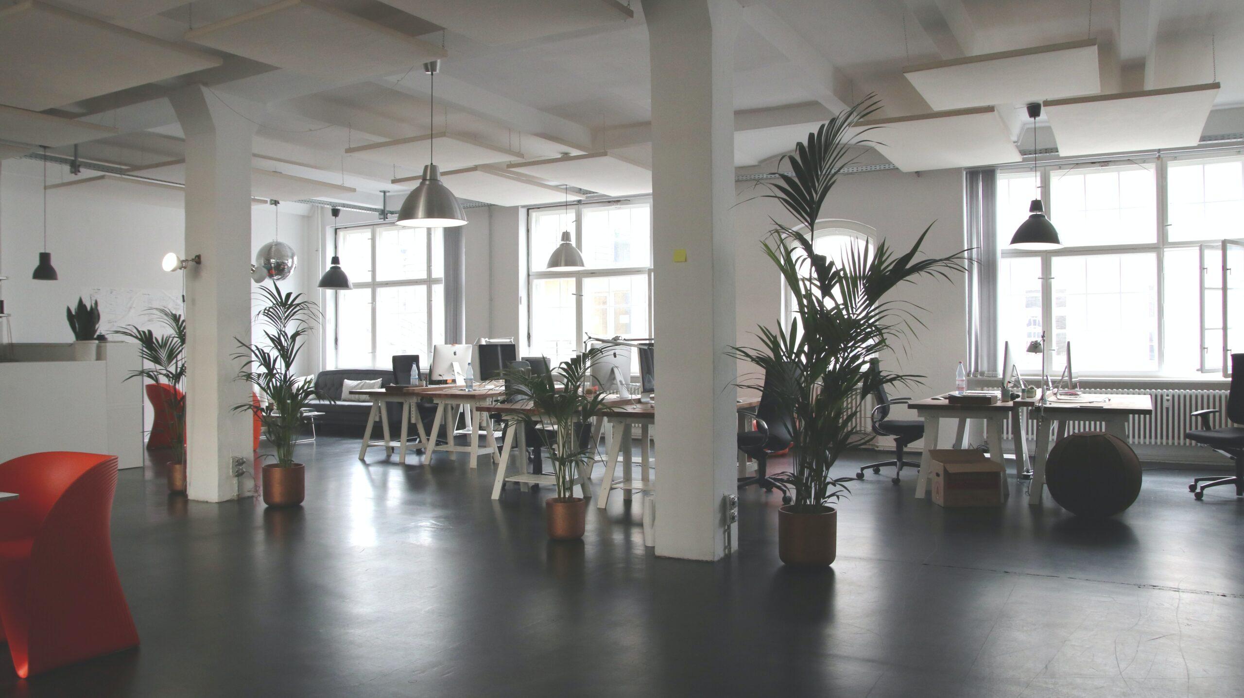 オフィスが日当たりが良いと仕事にも良い影響が?