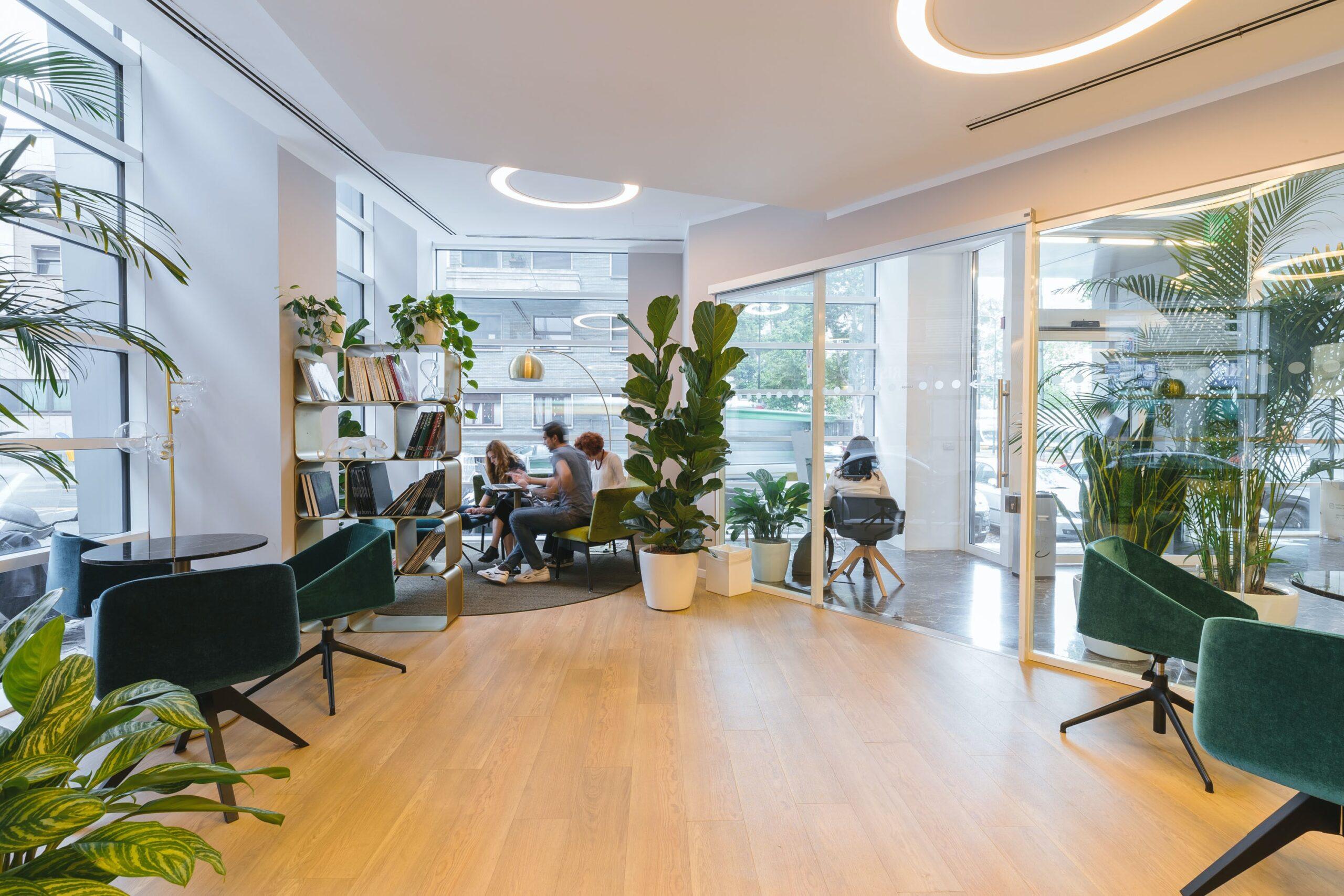 オフィスの内装はこう考える②:植物を取り入れる